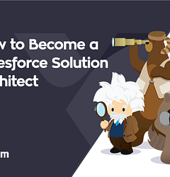 How to become a salesforce solution architect?