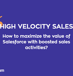Everything You Should Know About High-Velocity Sales